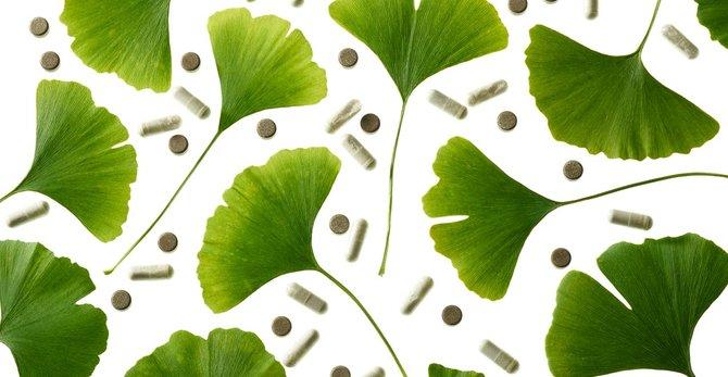Ginkgo biloba: beneficios para la piel